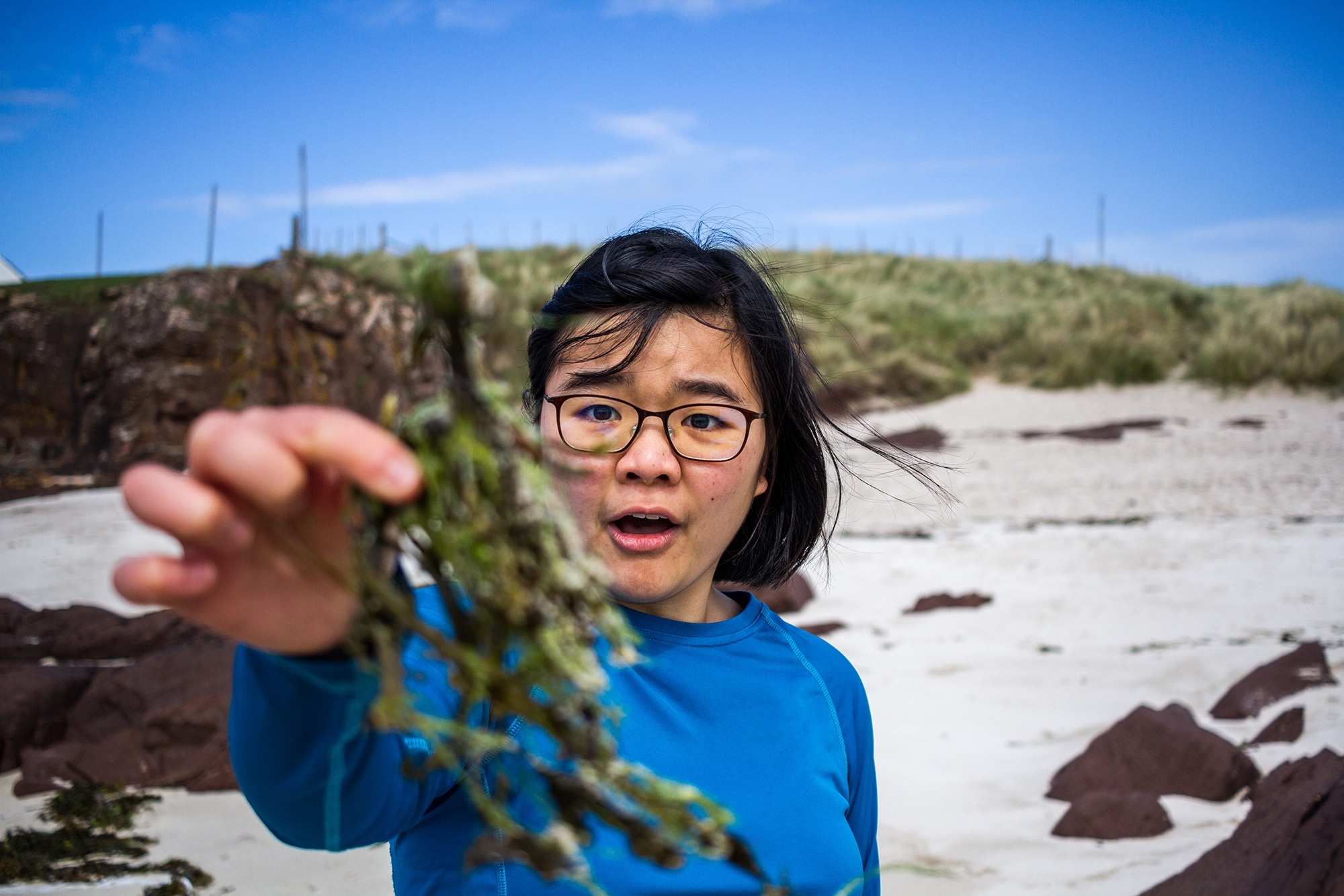 Esther picking up the seaweed in Assynt